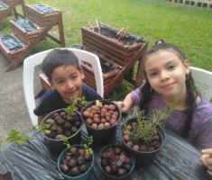 Crianças plantando